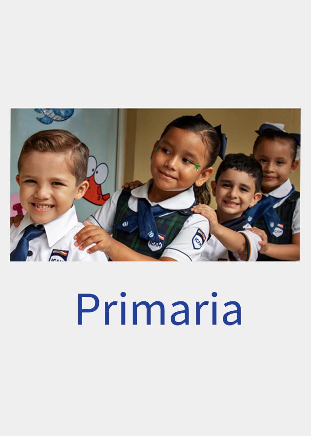 primaria-01m