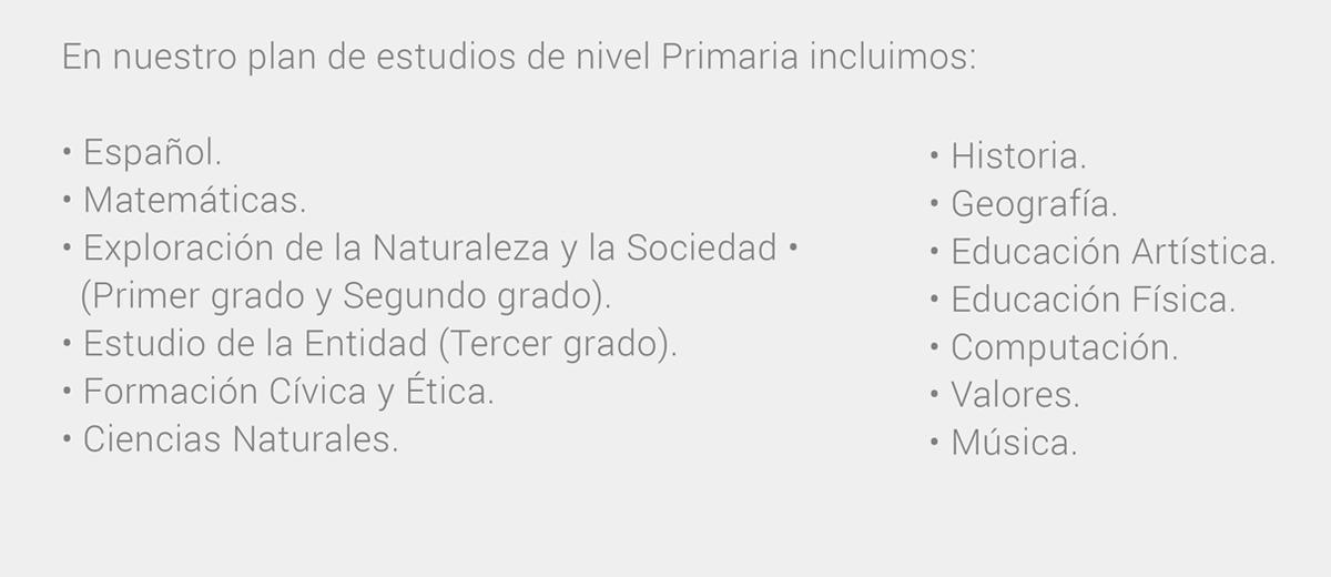 primaria-02